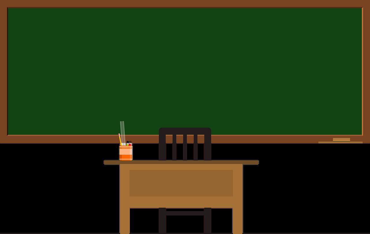 Lehrer*in